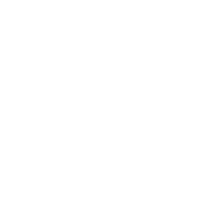 mississippi-icon